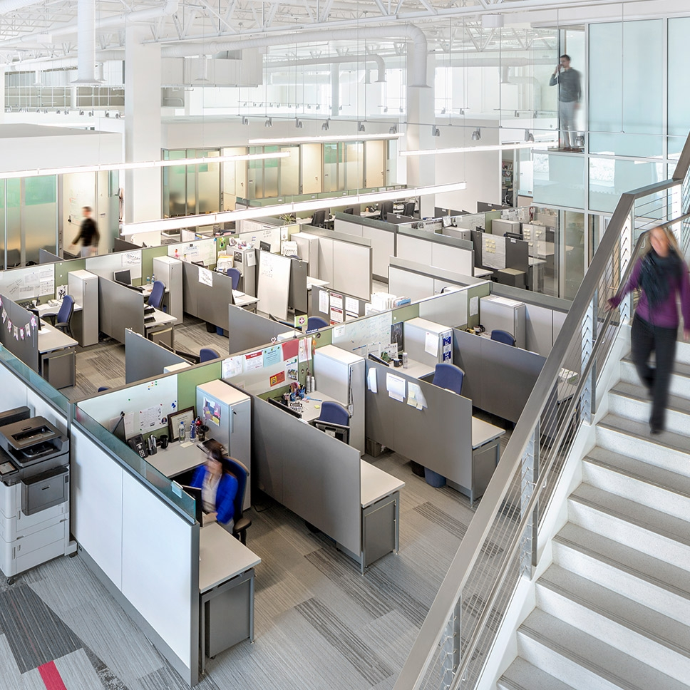 Charming Corporate Open Office Design
